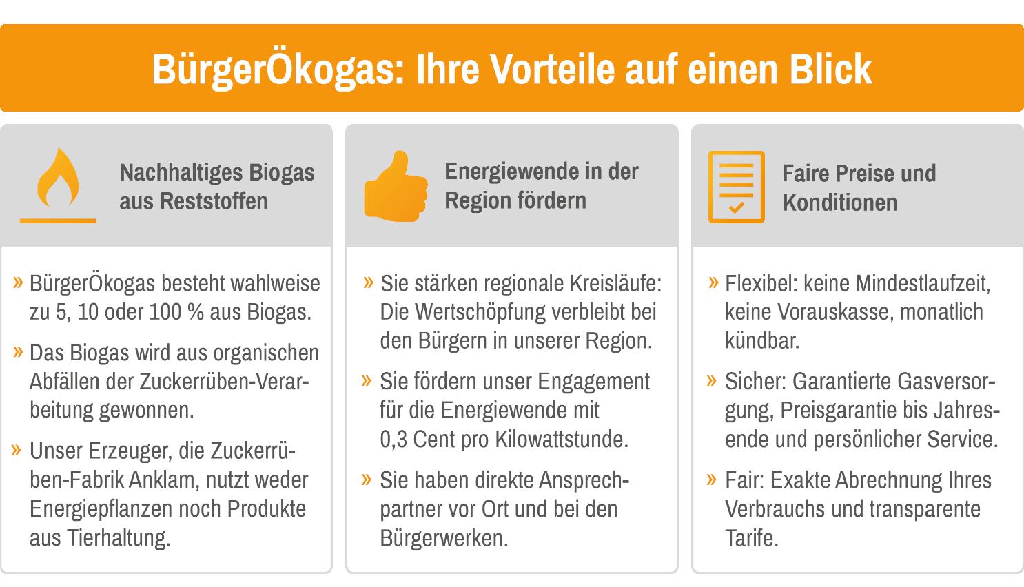 BürgerÖkogas: Ihre Vorteile auf einen Blick.